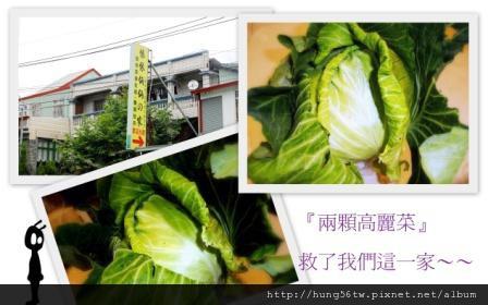 兩顆高麗菜.jpg