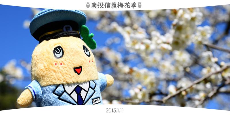 2015南投信義梅花季