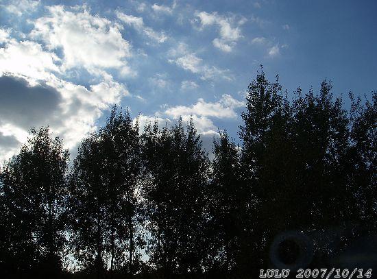 我的窗外~白天