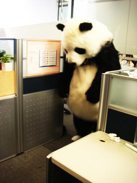 喪氣熊貓.jpg