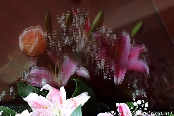 2010-03-27_065.jpg
