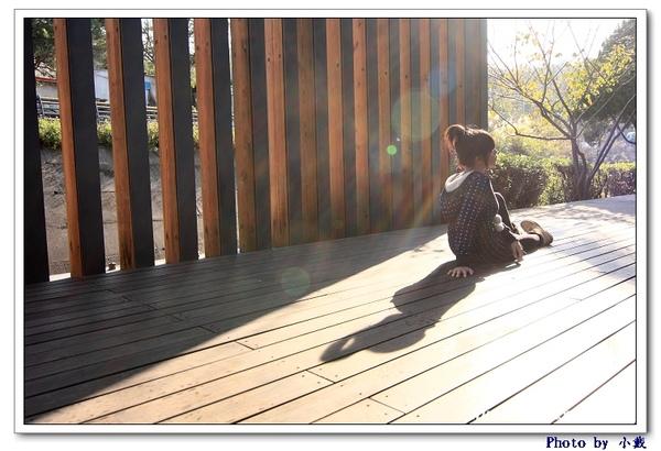 2008_12_07_382.jpg