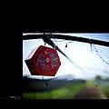 29-20120605HUOYE.jpg