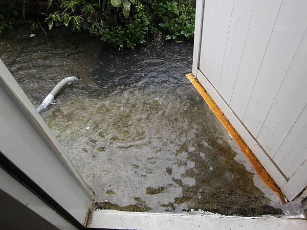 我家門前有小河