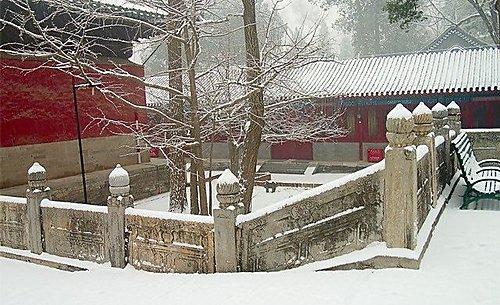 大殿 - 大覺寺雪景
