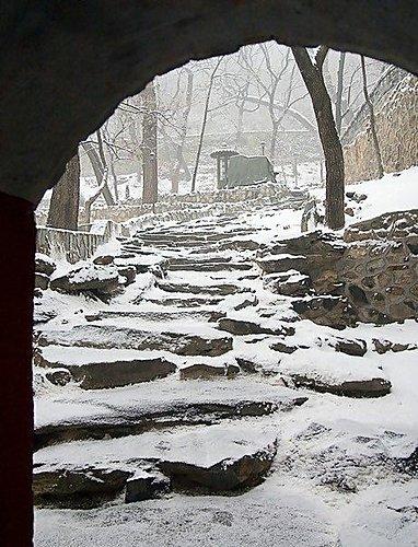 後山 - 大覺寺雪景