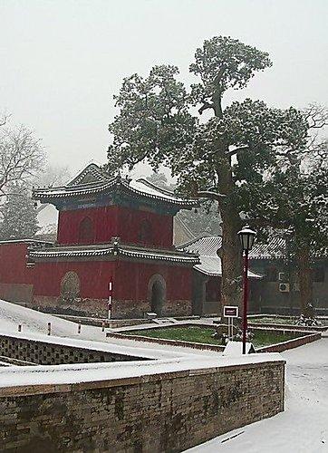 雪景 - 北京大覺寺 2