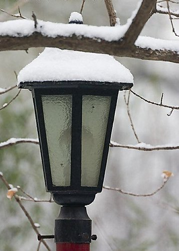燈 - 大覺寺雪景