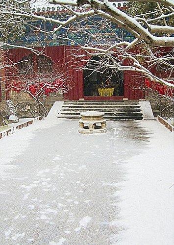 雪景 - 北京大覺寺 4