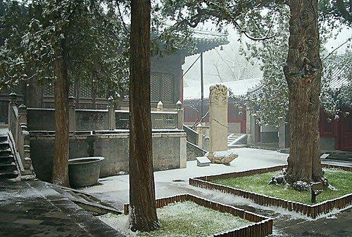 雪景 - 北京大覺寺 6