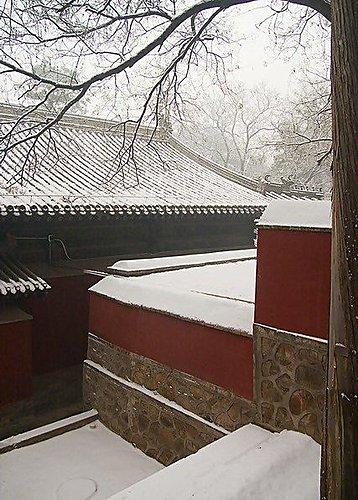 院子 - 大覺寺雪景