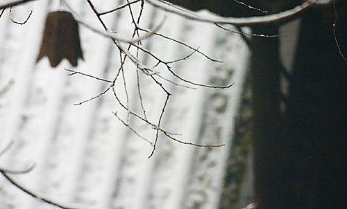 風鈴 - 屋頂 - 大覺寺雪景