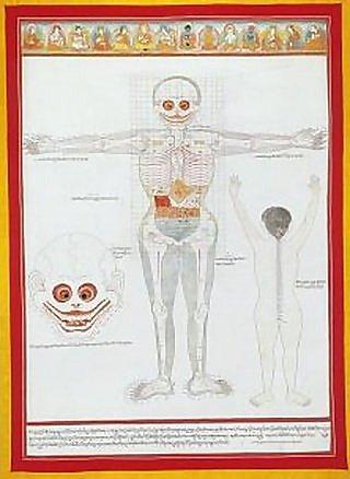 人體骨骼分布圖唐卡