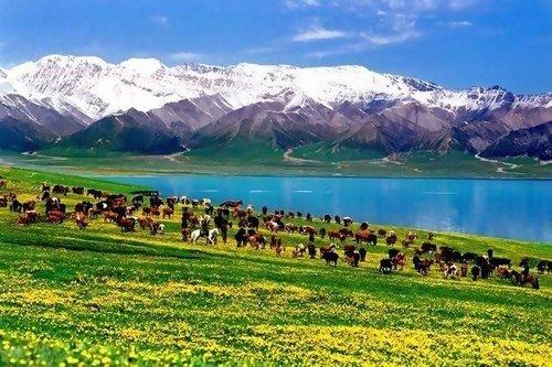 新疆 塞里木湖