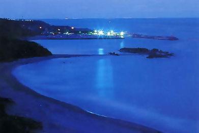 金樽港夜色