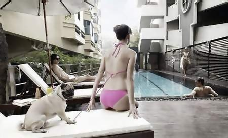 PUPPY CHOW狗糧廣告