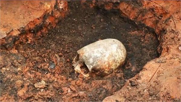 橢圓形頭骨