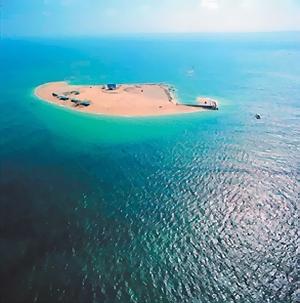 險礁嶼「島主」1