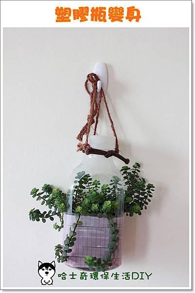 環保生活DIY-塑膠瓶吊盆87