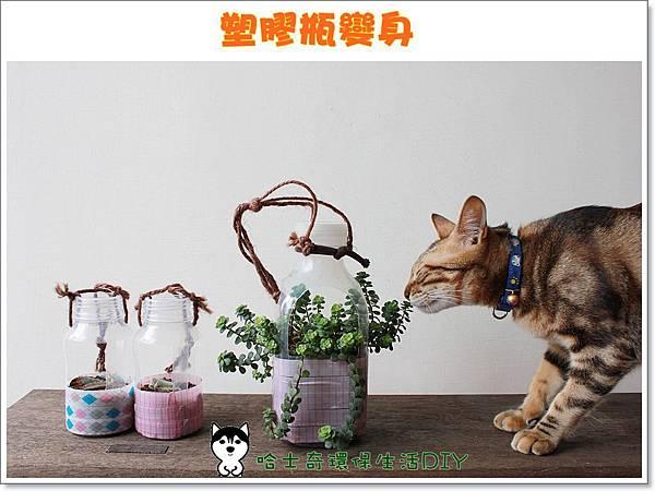 環保生活DIY-塑膠瓶吊盆93