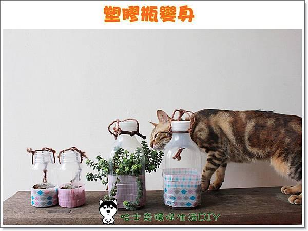 環保生活DIY-塑膠瓶吊盆99