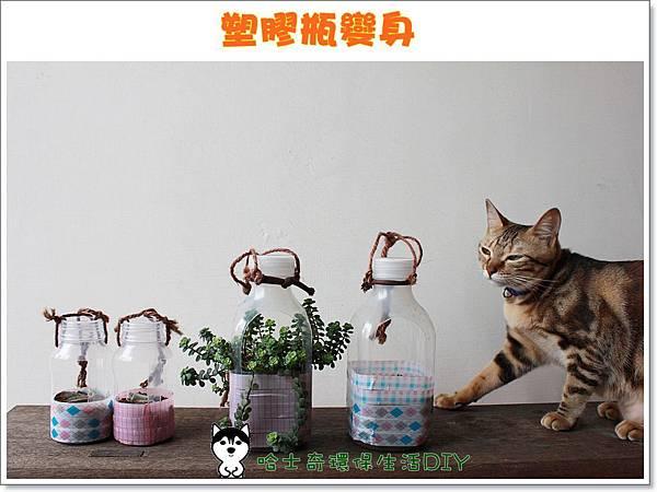 環保生活DIY-塑膠瓶吊盆01
