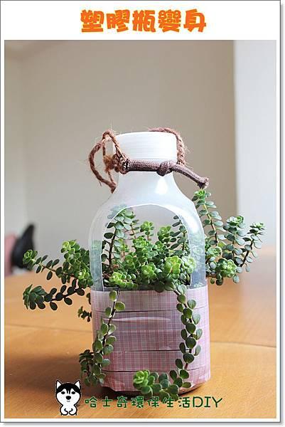 環保生活DIY-塑膠瓶吊盆16