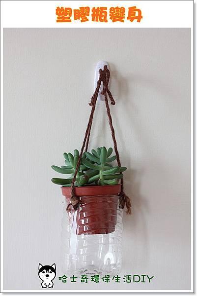 環保生活DIY-塑膠瓶吊盆27