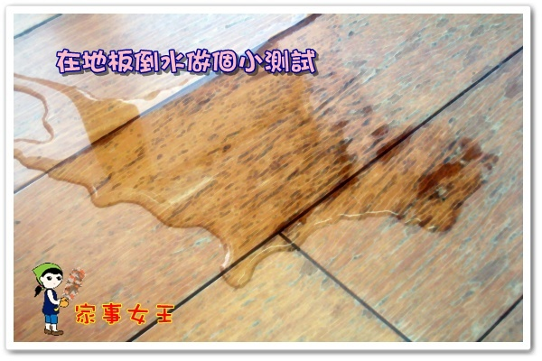 哈士奇居家清潔公司-家事女王-日本M9乾溼兩用彈性掃把2.JPG