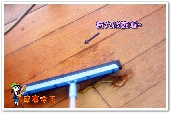 哈士奇居家清潔公司-家事女王-日本M9乾溼兩用彈性掃把4.JPG
