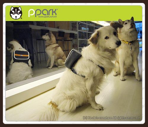 ppark二代商品-3