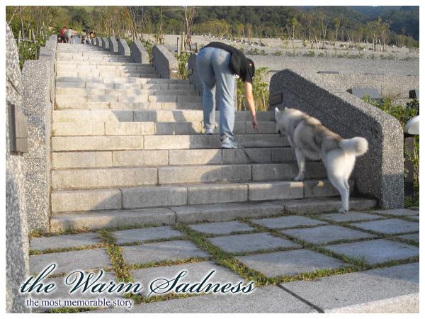 犬之報恩-5.jpg