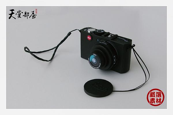 Panasonic D-LUX4