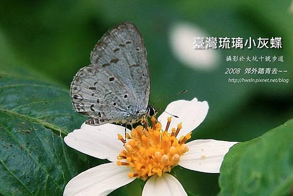 20081101 123.jpg