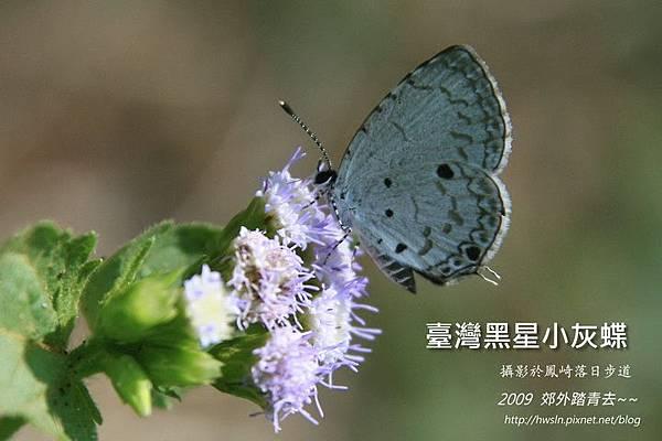 20090920 193-20.jpg
