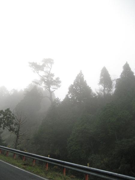 清晨的翠峰湖