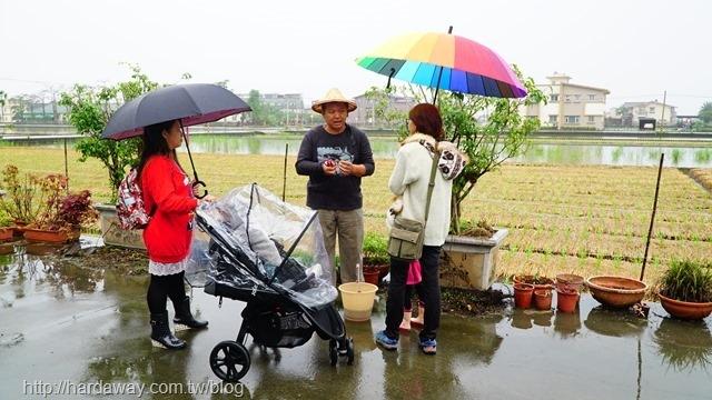 蘭城花事休閒農場