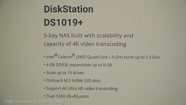DS1019+