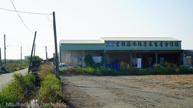 水陳小林的田畦邊果菜園