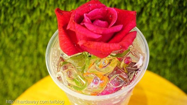 麥蘆卡玫瑰汽泡飲