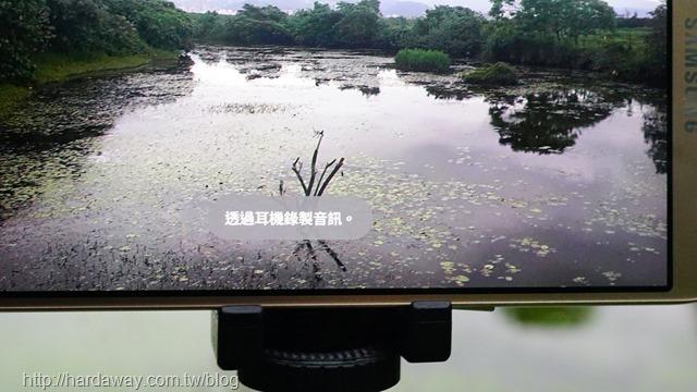 關渡自然公園錄音