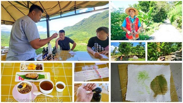 東河鄉泰時尚香草與咖啡尋夢心靈之旅