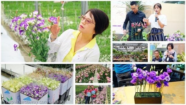 中部花卉產業巡禮