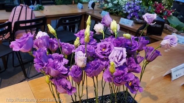 洋桔梗DIY插花體驗