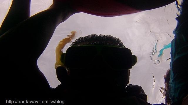 潮境海灣浮潛