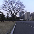 R0014808.JPG