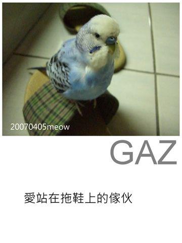 2007年4月 002.jpg