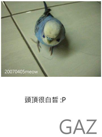 2007年4月 003.jpg