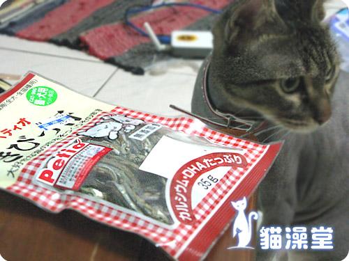 cat1001-7.jpg