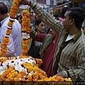 India trip_041